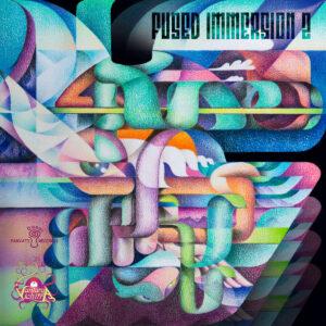 V.A. - Fused Immersion 2 (Vantara Vichitra Records / Parvati Records)